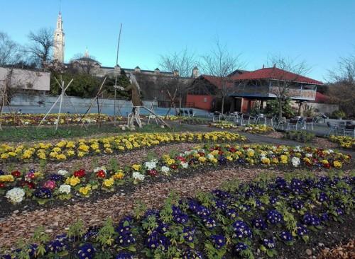 Visitas guiadas al Jardín Botánico Atlántico
